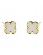 Złote kolczyki sztyfty koniczynka z białą masą perłową - pr.585